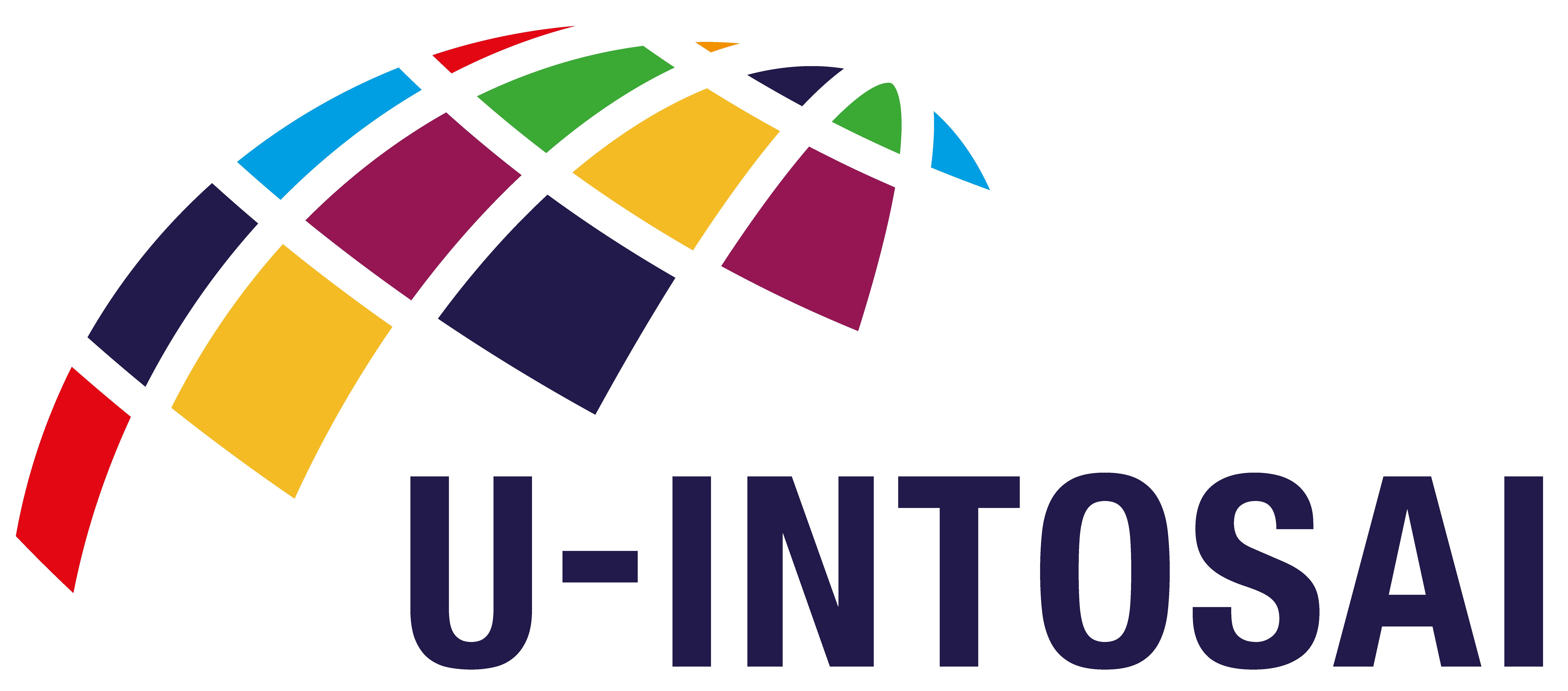 U-INTOSAI